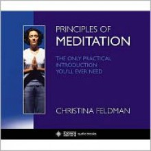 Meditation: The Only Introduction You'll Ever Need -