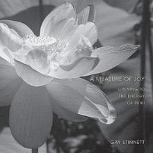 A Measure of Joy: Opening to the Energy of Reiki - Gay Stinnett, Carin Roaldset