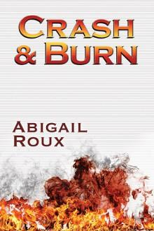 Crash & Burn - Abigail Roux