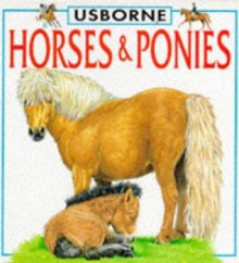 Horses and Ponies (Board Book) - Lucy Smith