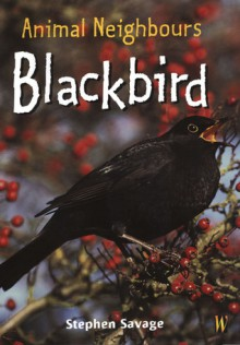 Blackbird - Stephen Savage