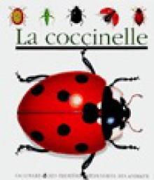 La coccinelle - Collectif