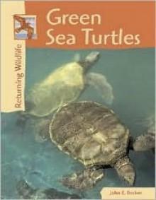 Green Sea Turtles (Returning Wildlife) - John E. Becker