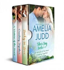 Silver Bay Box Set: Books 1-3 - Amelia Judd