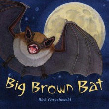 Big Brown Bat - Rick Chrustowski