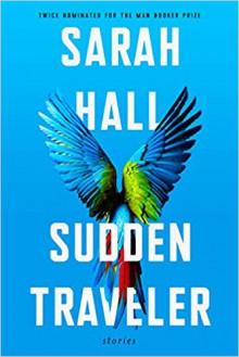 Sudden Traveler - Sarah Hall