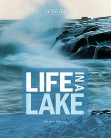 Life in a Lake - Melissa Stewart