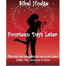 Fourteen Days Later (Helen Grey, #1) - Sibel Hodge