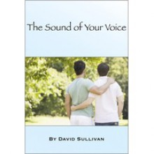 The Sound of Your Voice - David Sullivan
