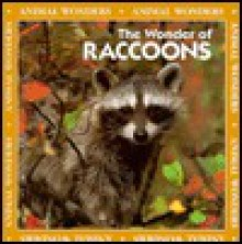 The Wonder of Raccoons - Jeff Fair