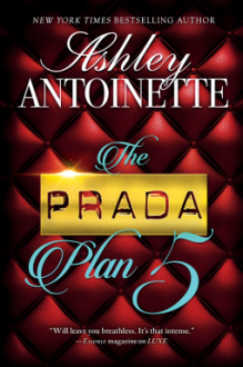The Prada Plan 5 - Ashley Antoinette
