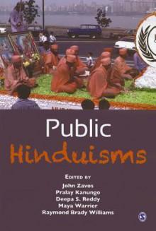 Public Hinduisms - Raymond Brady Williams, John Zavos, Maya Warrier