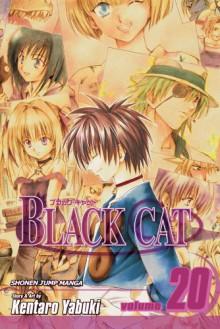 Black Cat: A Carefree Tomorrow, Vol. 20 - Kentaro Yabuki