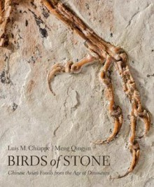 Birds of Stone : Chinese Avian Fossils from the Age of Dinosaurs - Luis M. Chiappe