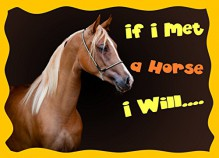 Children's Book : If I Met a Horse I Will ... (Rhyming Bedtime Story/Picture Book for Beginner , Readers About Horses, Ages 4-9) - Dan Jackson