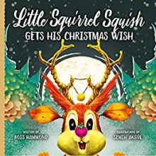 Little Squirrel Squish Gets His Christmas Wish - Ross Hammond,Semih Akgul