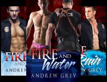Carlisle Cops (4 Book Series) - Andrew Grey
