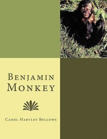 Benjamin Monkey - Carol Hartley Bellows