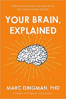Your Brain, Explained: What Neuroscience Reveals about Your Brain and its Quirks - Marc Dingman