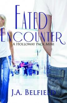 Fated Encounter - J.A. Belfield