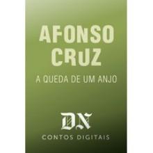 A Queda De Um Anjo - Afonso Cruz