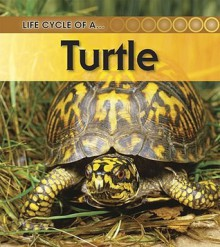 Turtle (Life Cycle of A...(Heinemann Paperback)) - Ron Fridell, Patricia Walsh