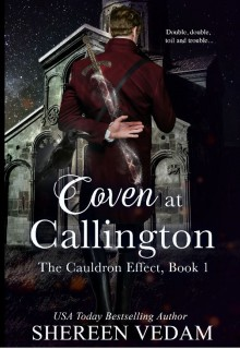 Coven at Callington (The Cauldron Effect #1) - Shereen Vedam