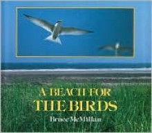 A Beach for the Birds - Bruce McMillan