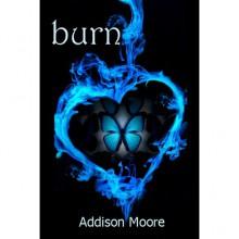 Burn (Celestra, #3) - Addison Moore