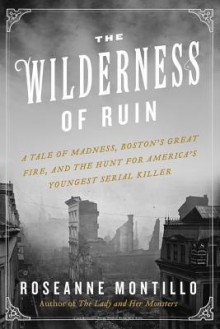 The Wilderness of Ruin - Roseanne Montillo