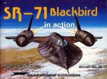 SR-71 Blackbird in action - Lou Drendel