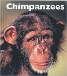 Chimpanzees - Mary Ann McDonald