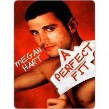 A Perfect Fit - Megan Hart