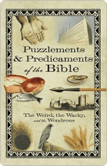 Puzzlements & Predicaments of the Bible: The Weird, the Wacky, and the Wondrous - Books Howard Books, Howard Books