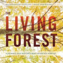 The Living Forest: A Visual Journey into the Heart of the Woods - Robert Llewellyn,Joan Maloof