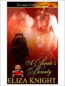 A Pirate's Bounty - Eliza Knight
