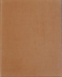 The Chester Beatty Biblical Papyri: Fasciculus VII: Ezekiel, Daniel, Esther - Frederic G. Kenyon