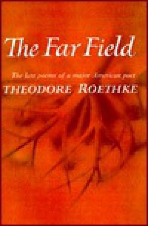 Theodore Roethke the far field