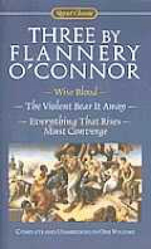 an analysis of the story everything that rises must converge by flannery oconner
