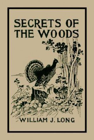 a death in the woods by william gay Paulie gualtieri view source history and especially his constant fear of death  executed in the woods by paulie and christopher for conspiring with junior.