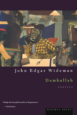 the culture religion and families in john wildemans damballah