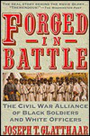 an analysis of african americans participation on the civil war