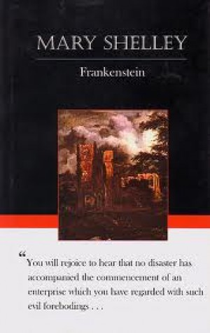 a comparison of the novels frankenstein by mary shelley and into the wild by jon krakauer
