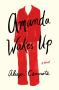 Amanda Wakes Up - Alisyn Camerota