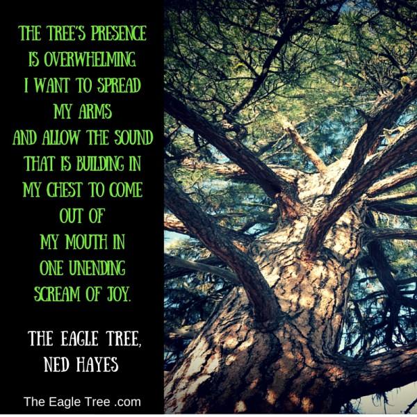 eagle tree quote
