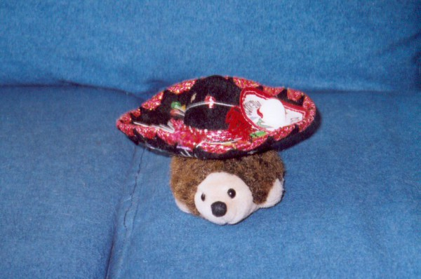 Speedy, the Swift and Spikey Hedgehog goes Mexican