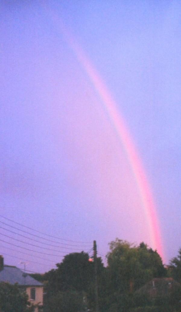 Welton Rainbow