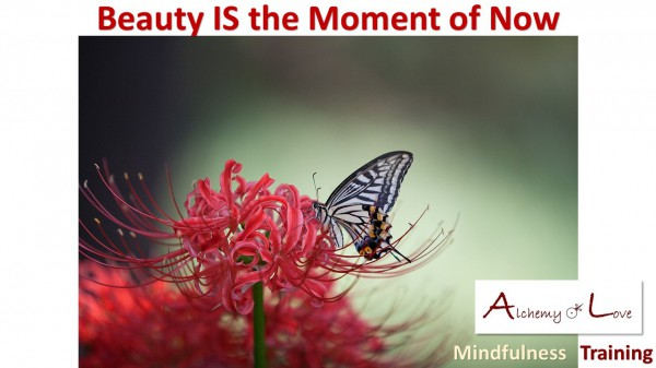 Living in the present moment and beauty image from Mindfulness Training