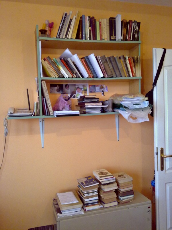When the winter's over, any surface becomes a bookshelf. (n._ n)