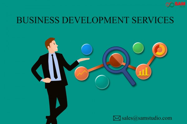 Business Development Services with Professional Digital Marketing Services